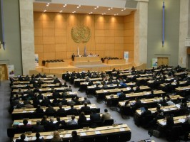 A ONU é favorável ou contrária aos cristãos?
