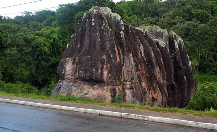 Parque terá pouco mais de 17 hectaresJefferson Peixoto | Agecom