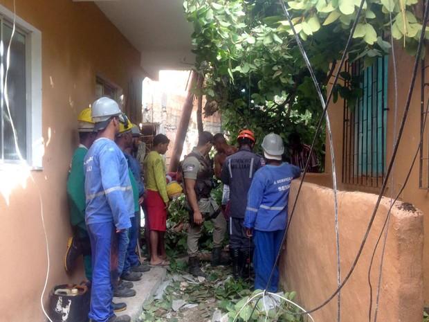 Árvore caiu sobre casas vizinhas à terreiro (Foto: Juliana Almirante/Site)