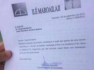 Solicitação de poda feita pelo terreiro à Sucop (Foto: Juliana Almirante / Site)