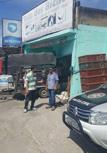 Animais foram encontrados em péssimas condiçõesDivulgação / Polícia Civil